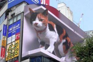 guerilla marketing 3-D billboard